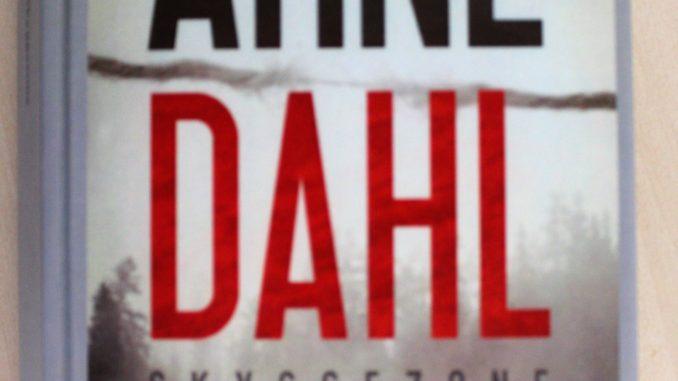 Boganmeldelse Skyggezone Arne Dahl